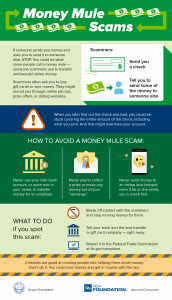 Money Mule Scam infographic